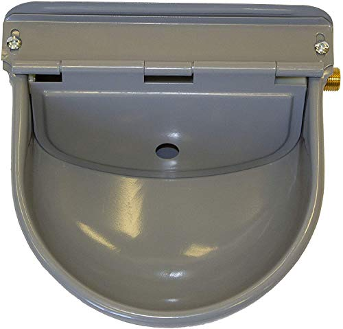 auto filling dog water bowl