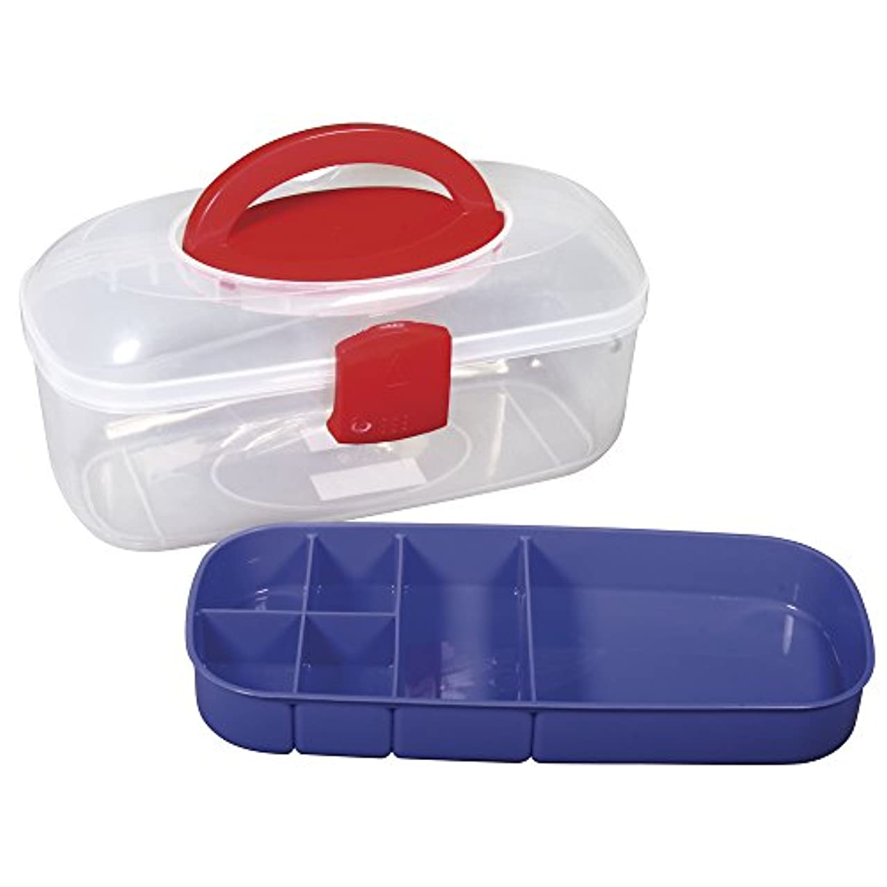 Rayher Sorting Box with Carry Handle Plus Inset, Plastic, Multi-Colour, 27.8 x 12.1 x 13.1 cm