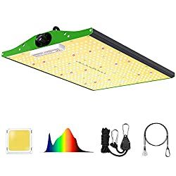 which is the best led grow lights in the world