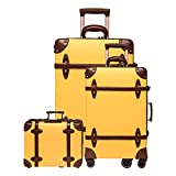 NZBZ vintage luggage set carry on cute suitcase with rolling spinner wheels Tsa lock luggage 3 pieces (Knight Gold, 14inch & 20inch & 28inch)