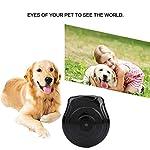 Caméra pour animal de compagnie, Mini caméra Chien de chat Cat Anti-perdu avec écran LCD Accessoires de collier de caméra enregistreur vidéo 5.3 * 5.7 * 3.3cm/2.1 * 2.2 * 1.3in, résolution 640 * 480Vi #2