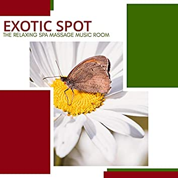 Exotic Spot - The Relaxing Spa Massage Music Room