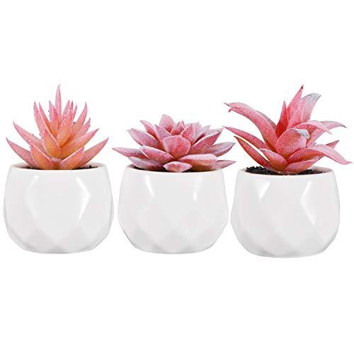 Zalava 3 Stück Künstliche Sukkulenten Pflanzen Kunstpflanze Künstliche Pflanzen mit Topf für Tisch Haus Balkon Büro Deko (Rot)