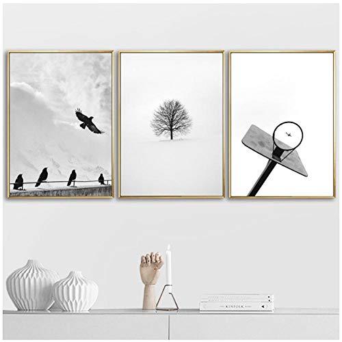 Marco de baloncesto pájaro árbol flecha pared arte lienzo pintura nórdico negro blanco carteles cuadros de pared para sala de estar decoración del hogar 51x71cmx3 sin marco