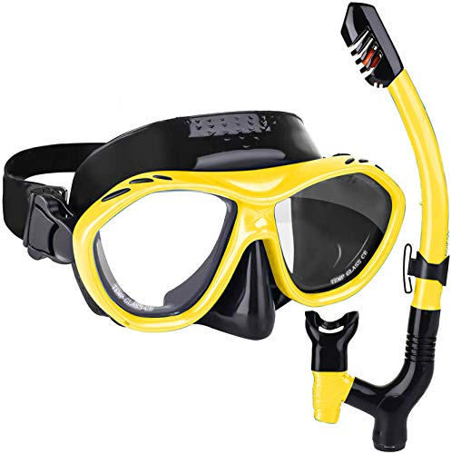 integity Adult Snorkel Set - Anti Fog Coated Tempered Glass 180° Snorkeling Dive Mask with Upgraded Free Breathing Snorkels, Latest Dual Valve Anti-Leak Dry Top Snorkeling Package for Adult and Youth