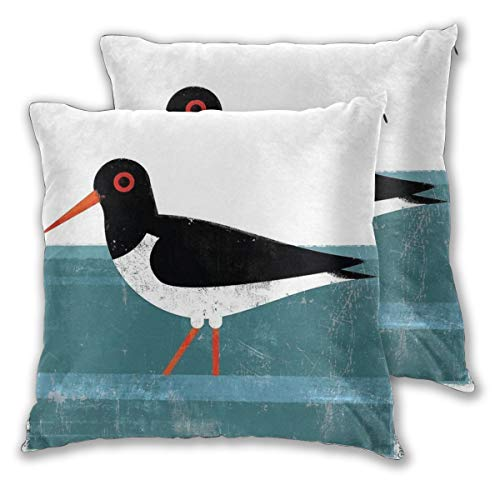 Throw Pillow Covers Worn-Out Bird Of Prey Cushion Covers Soft Polyester Square Decorative Throw Pillow Case For Living Room Sofa Couch Bed Pillowcases 2pc Variety Of Sizes