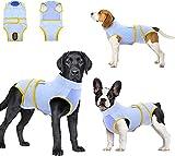Traje de recuperación para perros y gatos después de la cirugía, camisa de recuperación para heridas abdominales masculinas y femeninas, vendas de cuello en E, alternativo
