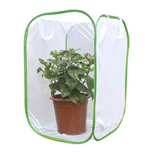 Sortim Pflanze Glashaus Transparent Wasserdicht Kultivierung Zimmer Anti - Moskito Box Schmetterling Pet Käfig Gewächszelt, Mini Gewächshaus Grow House - 1, 40cmx40cmx60cm