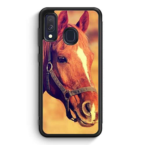 Pferd Foto - Silikon Hülle für Samsung Galaxy A40 - Motiv Design H& Tiere Süß Cool Lustig Witzig - Cover Handyhülle Schutzhülle Case Schale