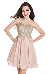 Junior's Nude Pink Applique embellished Lace Short Homecoming Dress
