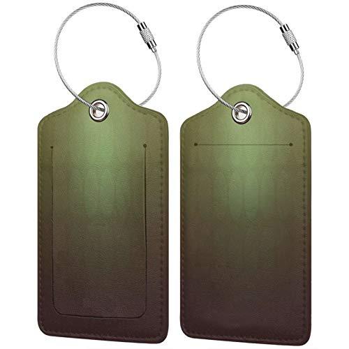FULIYA Juego de 2 etiquetas de equipaje, de piel de alta gama, para maletas, tarjetas de visita, etiquetas de identificación de viaje, círculos, color verde, fondo