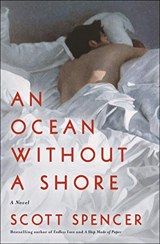 An Ocean Without a Shore: A Novel
