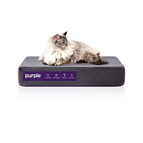 Purple Animal Bed for Cats