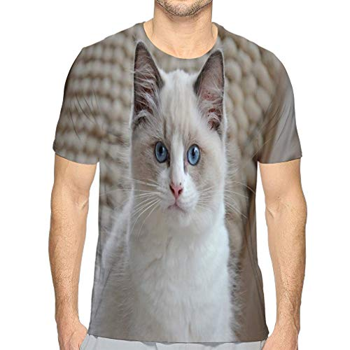 Men's Athletic Quick Dry Short Sleeve T Shirts White Ragdoll Kitten White Ragdoll Kitten Bright Blue Eyes Looking Camera Against White Pillows