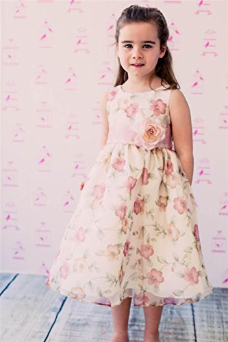 Cinderella Couture CinderellaCouture-ME839-rose Printed Jacquard Baby Dress