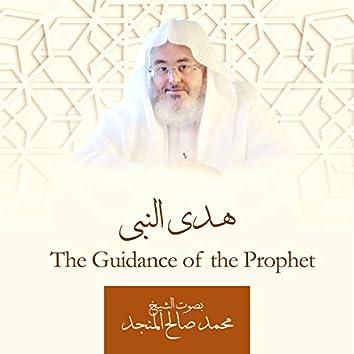 هدي النبي للشيخ محمد صالح المنجد