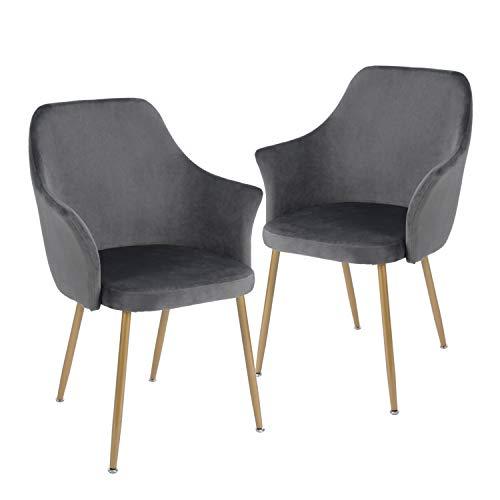 H.J WeDoo 2er Set Samt Esszimmerstuhl mit Gepolstertem Rücken und Sitz, Retro Stuhl mit Armlehne und Metall Gold Beine - Grau