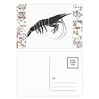 世界の海洋生物を発見してエビ 公式ポストカードセットサンクスカード郵送側20個