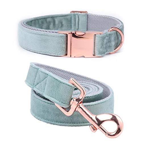 Blue Velvet Adjustable Dog Collars and Leash Gold Buckle-collar and leash,XS