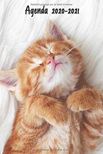 Agenda 2020-2021: Agenda Scolaire Journalier chat mignon   Primaire - Collège - Lycée - Etudiant - Toute l'année scolaire - avec calendrier des ... et journalier   Emploi du temps   Calendrier