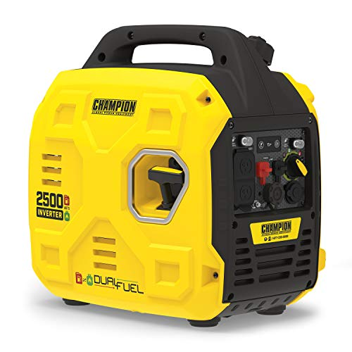 Champion Power Equipment 200961 2500-Watt Dual...