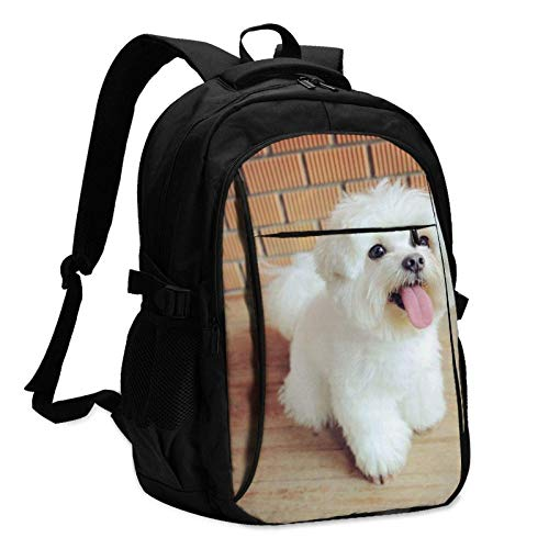 XCNGG Maltese Dog Travel Laptop Backpack with USB Charging Port Multifunction Work School Bag
