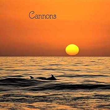 Cannons (feat. Slide Creek Band)
