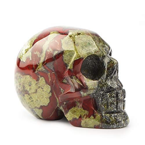 Artistone 2.0' Crystal Skull Statues, Gemstone Skull Healing Stones Hand Carved Fine Art Sculpture Reiki Healing Stone Statue (Dragon Blood Jasper)