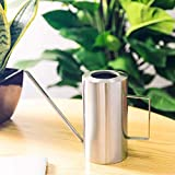 IMEEA Watering Can Stainless Steel SUS304 Long Spout Cylindrical Brushed Modern Style, 50oz/1.5L