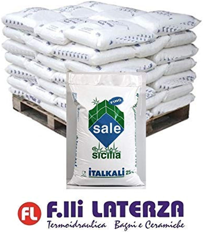 10 Scke SALE ALIMENTARE FINO KG 25 (250 KG) FüR PIZZERIA, PANIFICAZIONI, SALUMI