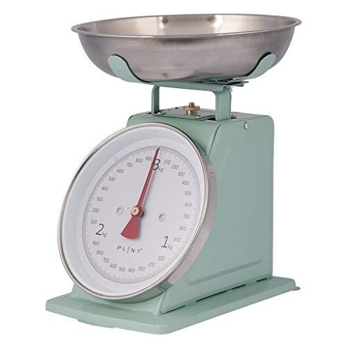 Báscula de cocina vintage retro con diseño de platos, báscula de metal (Leaf Mint)