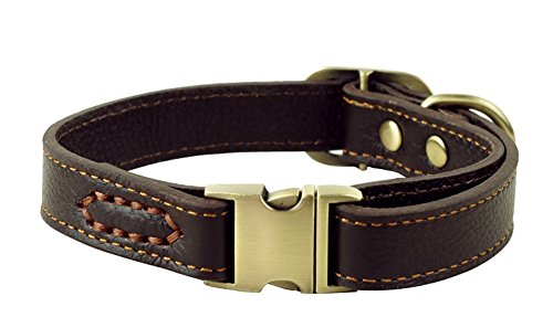 Rantow Collier réglable en Cuir pour Chiens, col de 30 cm à 43 cm et 2 cm de Large, Collier à la Main Solide pour Chiens Moyens/Petits (Marron)