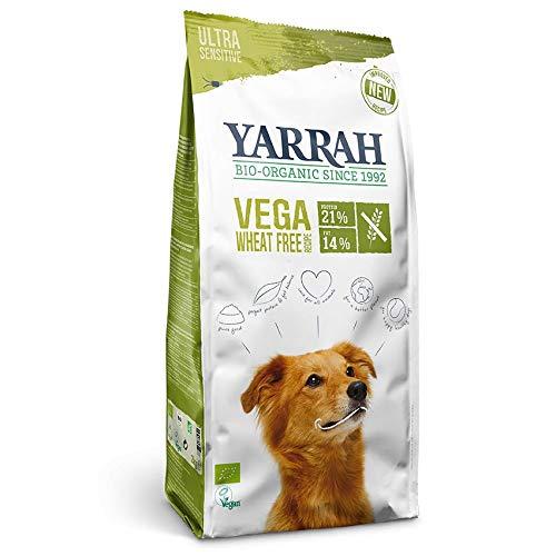 YARRAH Vega Grain-Free cibo secco vegetariano e senza cereali per cani adulti I Squisiti bocconcini biologici con verdure, 10kg I 100% biologico e privo di additivi artificiali