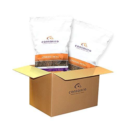 consaltro Mineral AKTIV - Natürliches Mineralfutter für maximale Leistung - 12,5kg x 2 Sack