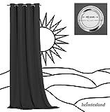 heimtexland ® Verdunklungsvorhang Dekoschal Blickdicht Kinder Gardine Sterne Silber Dunkelblau Ösenschal HxB 160x135 Typ639 - 6