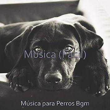Musica (Facil)