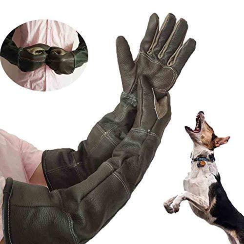 Wwjpet Dierenhandschoenen, anti-Biss-/krashandschoenen, veilige, duurzame lederen handschoenen voor honden, katten, vogels, slangen, wilde dieren en tuinhandschoenen