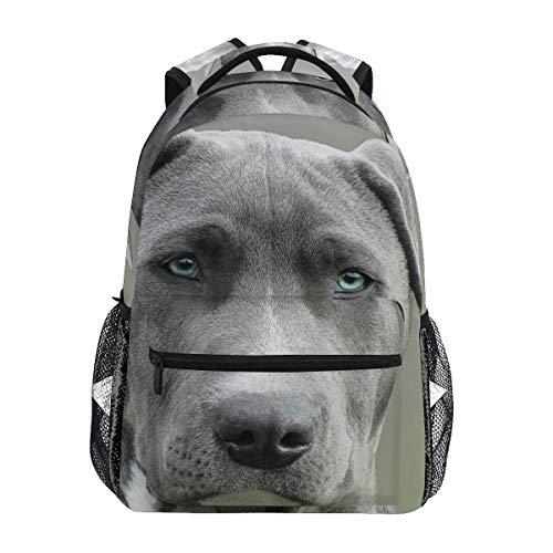 FANTAZIO Rucksack für Hunde, Schwarz und Weiß, Kurzmantel