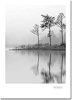 VDT Nordic Style Lake Boat Forest Nature Wall Art Print Painting Decoration Pictures Home Decor