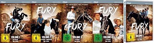 FURY - DIE ABENTEUER EINES PFERDES komplett Staffel 1 2 3 4 5 alle 114 Folgen 19 DVD Box Collection