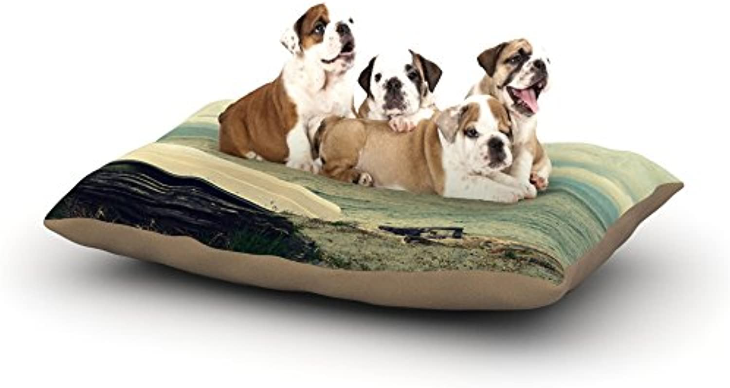 Kess InHouse Robin Dickinson Venture Out  Fleece Dog Bed, 30 by 40Inch, Boat