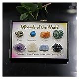 YSJJSQZ Cristal áspero 8 unids Minnerales de Cuarzo de Cristal Natural Espécimen Amatista Cuarzo Cuarzo Forma Irregular Roca áspera Roca Roca Reiki Healing Hogar (Color : 1 Set)