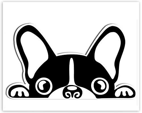 SkinoEu® 1 x Vinyl Aufkleber Autoaufkleber Sticker Dog Hund Französische Bulldogge Auto Moto Motorrad Fahrrad Skate Helm Fenster Spiegel Tür Tuning B 88