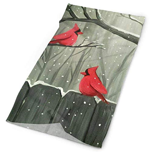 Voxpkrs Art Cardinal Birds Paingting Headwrap Men Women Headwear Headband Neck Scarf Polyester Do Rag Cap Magic Head Scarf Bandana Personal Headdress Face Mask Neck Gaiter