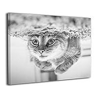 Skydoor J パネル ポスターフレーム 猫 かわいい インテリア アートフレーム 額 モダン 壁掛けポスタ アート 壁アート 壁掛け絵画 装飾画 かべ飾り 50×40