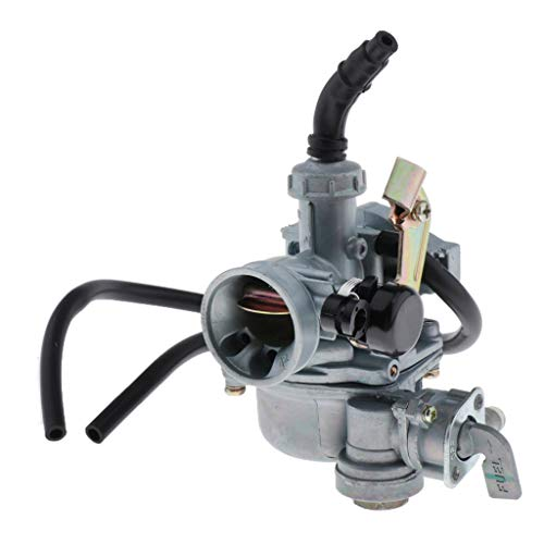 H HILABEE Carburador de 19 Mm para DY100 CD110 Motor Carb ATV Ciclomotor Mini Bicicleta Nueva