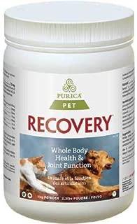 Recovery SA Powder 2.2 lb