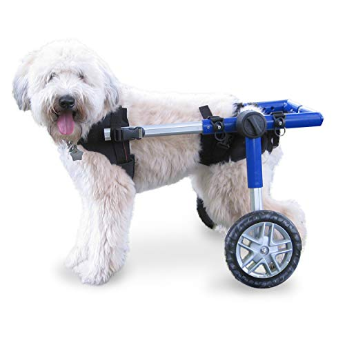 Walkin' Wheels Dog Wheelchair - for Medium Dogs 26-49 Pounds - Veterinarian Approved - Dog...