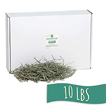 Small Pet Select Orchard Grass Hay - 10lbs Delivered Fresh