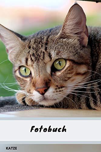 Fotobuch Katze: Ein schönes Geschenk für echte Katzenliebhaber